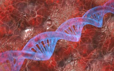 DNA Gender Change – Is It Possible?